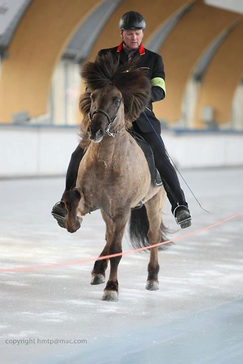 Horseonice_2013_glymur