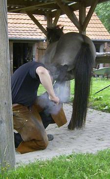 Hufschmied_2008_10klein