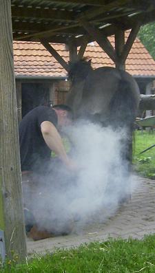 Hufschmied_2008_11klein
