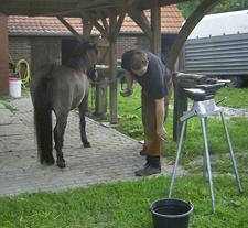 Hufschmied_2008_2klein