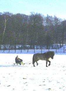 Januar2006_leiknir10web