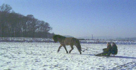 Januar2006_leiknir7web