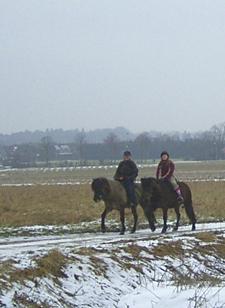 Januar2006_wanderritt5web