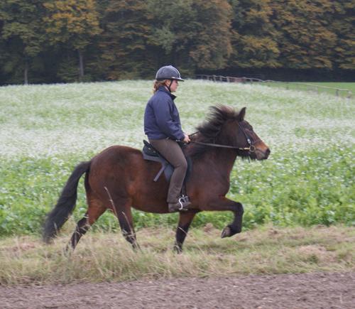 Kilja_oktober2010_23