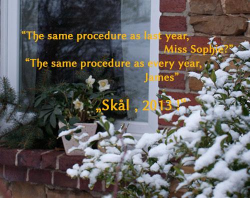 Neujahr_2012_7