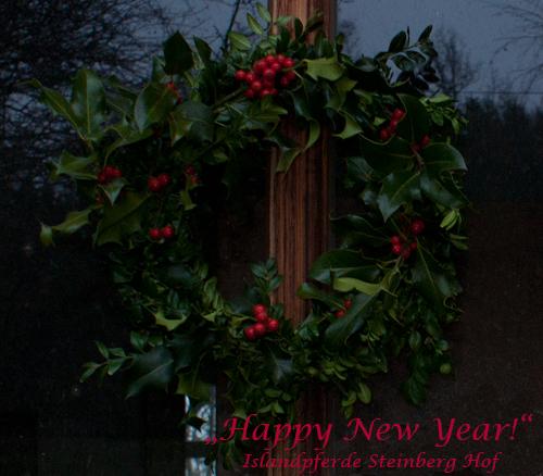 Neujahr_2014_2
