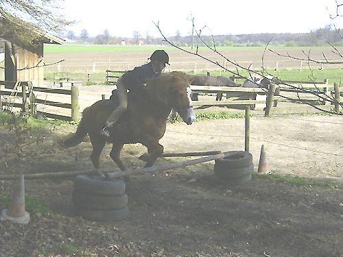 Reitkurs_April2009_104