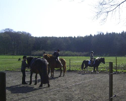 Reitkurs_April2009_50