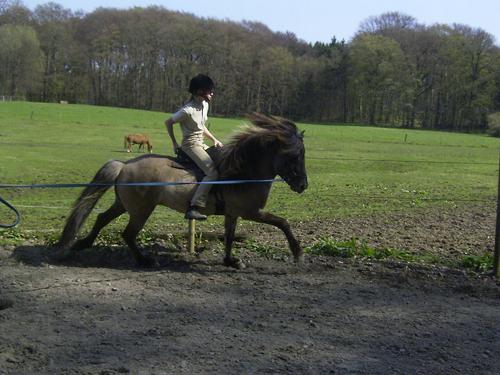 Reitkurs_April2009_76