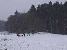 Schlittenfahrt_dezember2009_21klein
