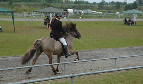 Turnier_lingen2007_32