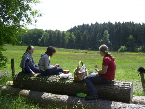 Wanderritt_mai2008_1