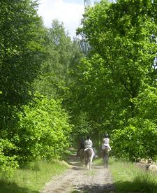 Wanderritt_mai2008_3klein