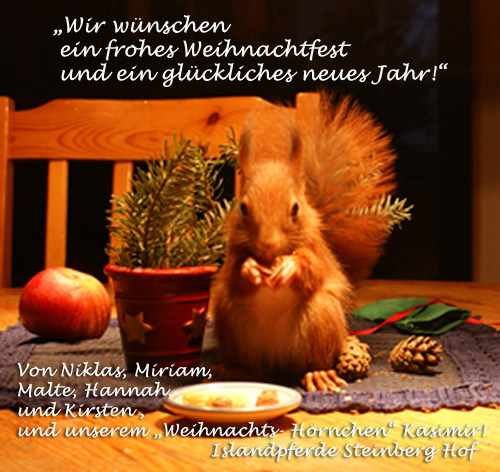 Weihnachtskarte_Kasimir_v5