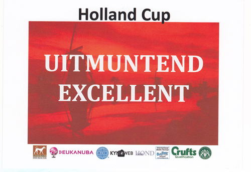 Holland-Cup-2014-Excellent