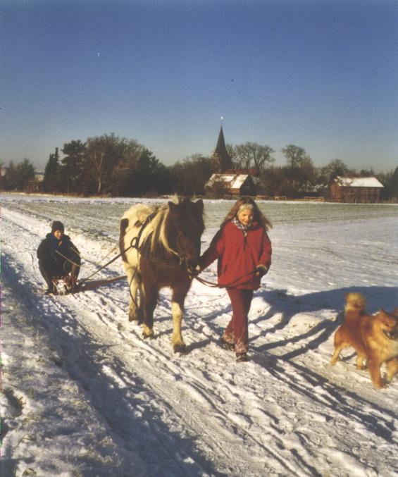 schlittenfahrt2002