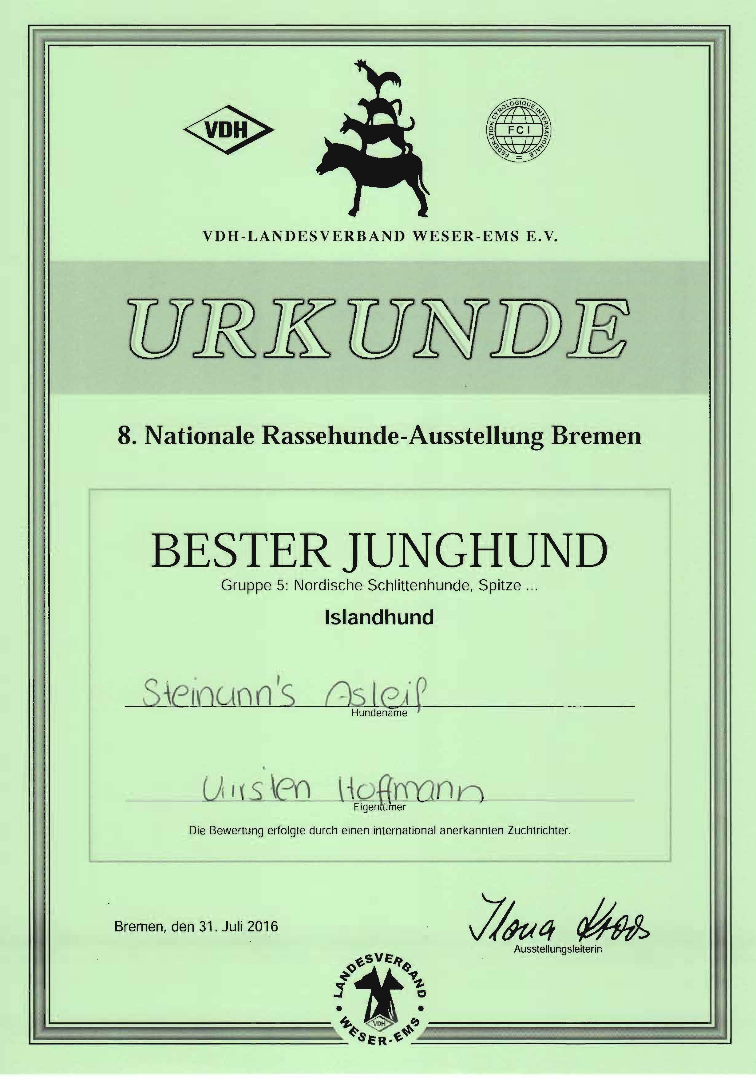 Nationale-Bremen-Juli-2016-Asleif-Bester-Junghund