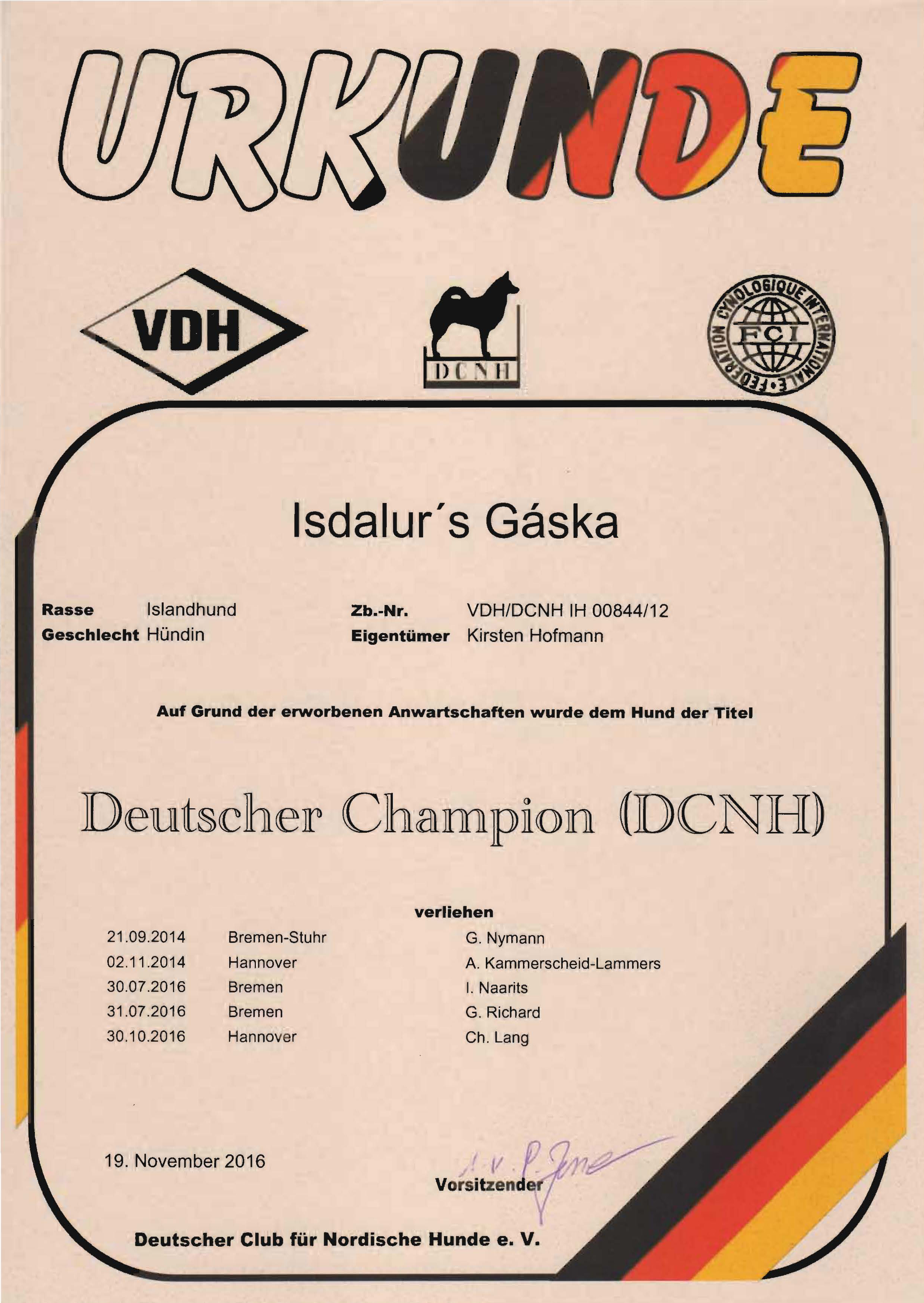gaska-dcnh-champion-titel